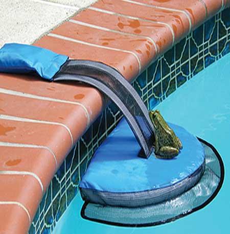 Swimming Pool Critter Escape Ramp