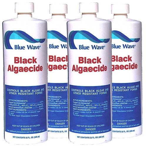 Blue wave black zapper algaecide for swimming pools for Kill black algae swimming pool