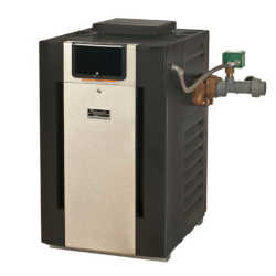 Raypak Professional Pool and Spa Heater with CuNi and Brass